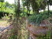VILLA A SENIGALLIA: Zona Vivere Verde, singola signorile dei primi del '900 di mq. 632 (5 unità abitative + usi diversi) + parco mq. 7.500 con ampi gazebo